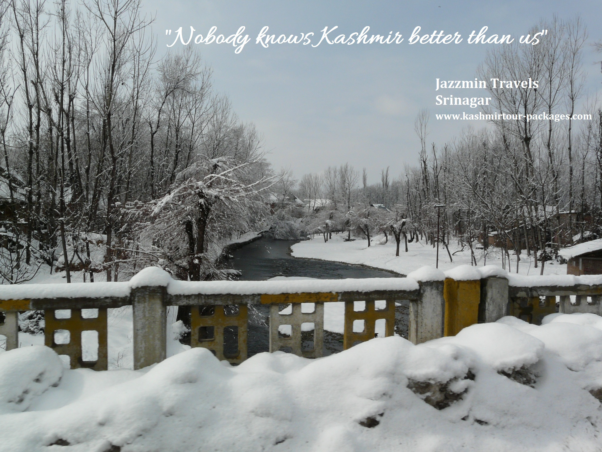 Kashmir Holiday Packages 38 from www.kashmirtour-packages.com