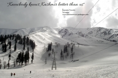 Kashmir Tour Packages 32 - www.kashmirtour-packages.com