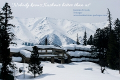 Kashmir Tour Packages 38 Gulmarg- www.kashmirtour-packages.com