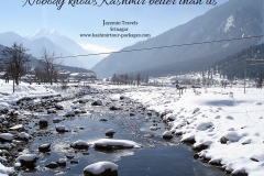 Kashmir Tour Packages 40 - www.kashmirtour-packages.com