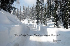 kashmir tour packages from jazzmin travels 76