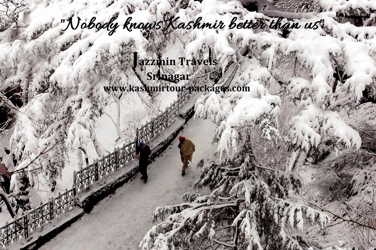 kashmir tour packages from jazzmin travels 70