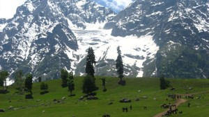 Kashmir Holiday Packages from Jazzmin Travels