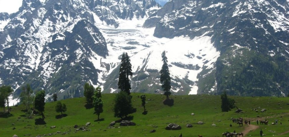 Jazzmin Travels provides best Kashmir Tour Packages