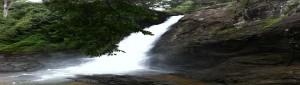 Soochipara_Falls,_Wayanad_Kerala,_2013_(Landscape)