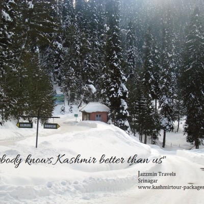 Jazzmin Travels, based in capital of Kashmir, Srinagar is one of the most trusted Kashmir travel operator in the valley.