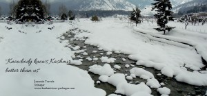 Spellbound beauty of Pahalgam will not let you go anywhere