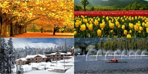Awesome shades of Kashmir valley in Spring, Summer, Autumn & Winter