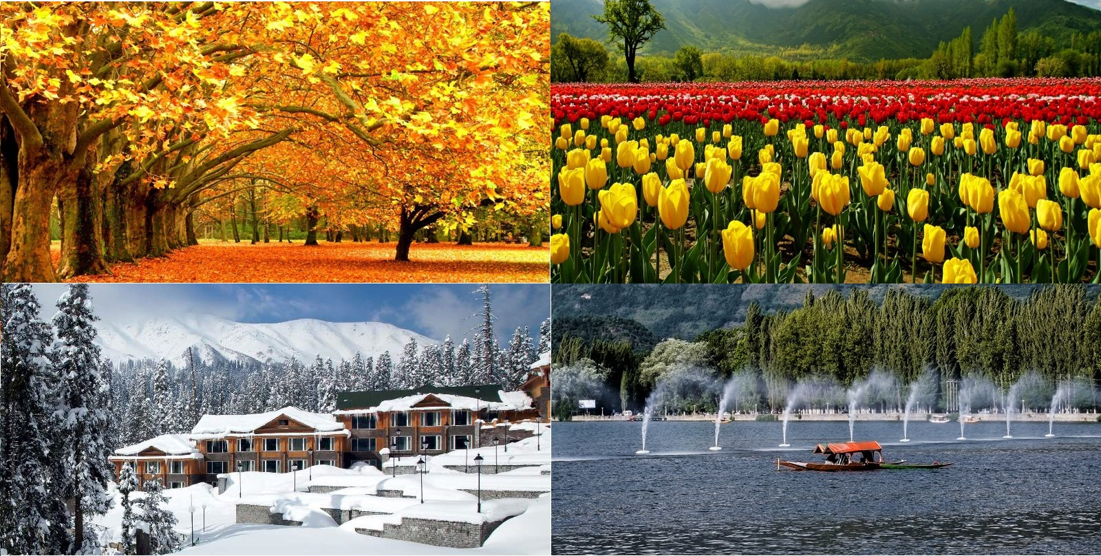 All seasons of Kashmir